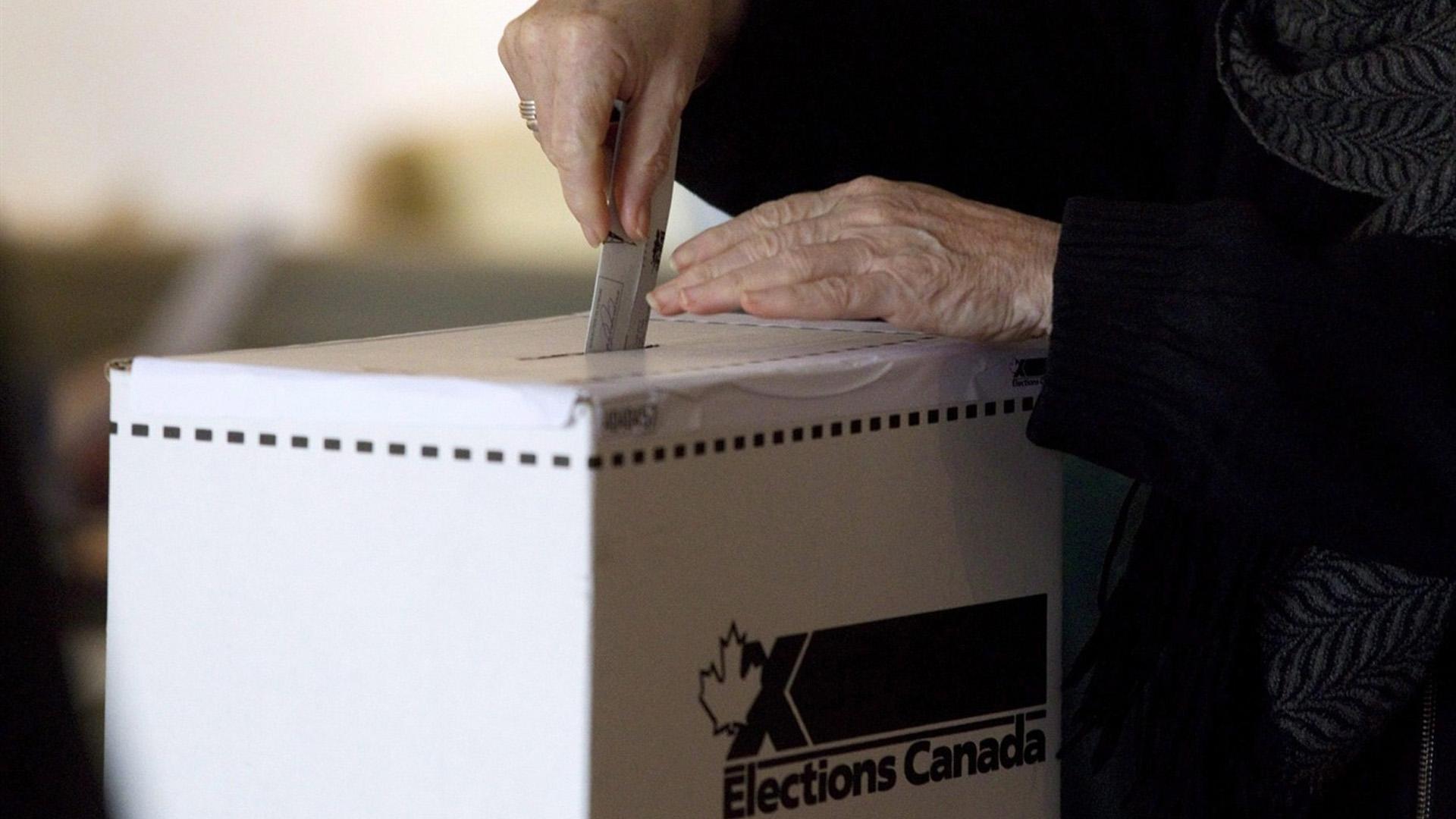 Exploring Toronto voter statistics using Golang