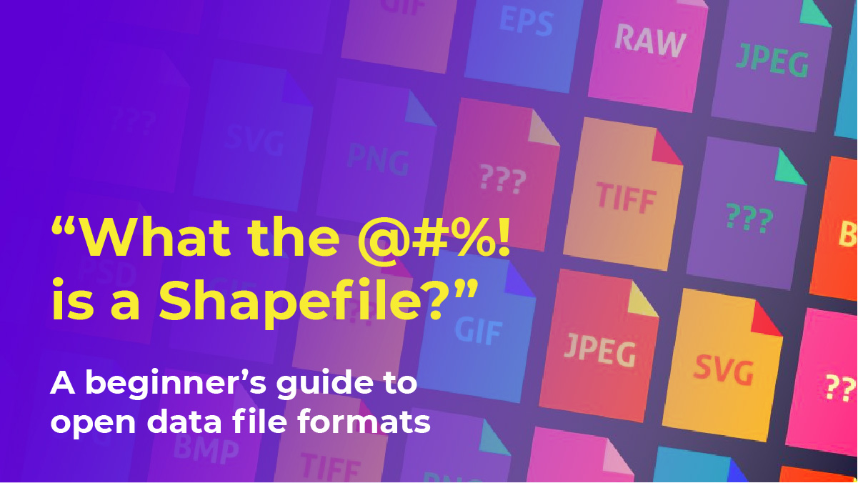 What the @#%! is a Shapefile?